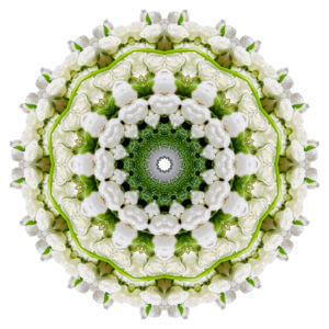 Mandala Art: JG Home Living