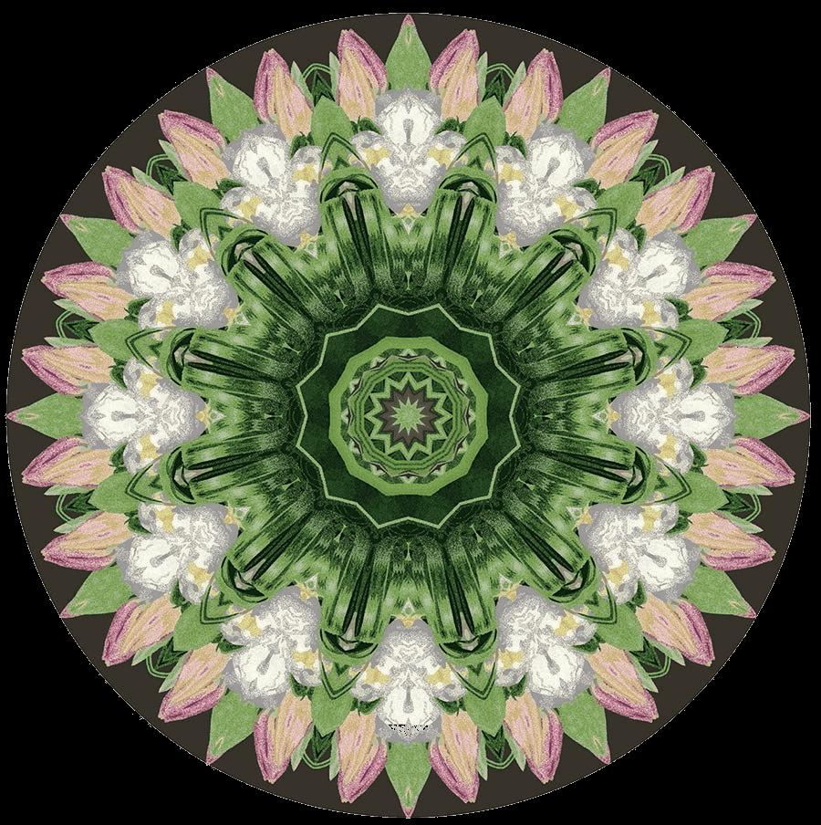 Handmade Mandala Art Rugs